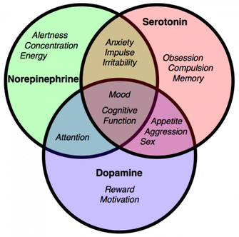 A little chart to show the purpose of serotonin and dopamine.