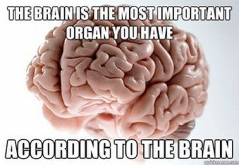 Well played brain, well played.
