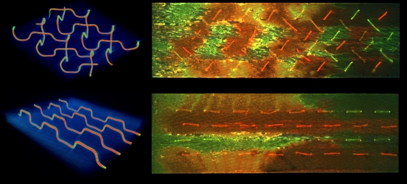 3D microvascular networks for self-healing composites: Researchers were able to achieve more effective self-healing with the herringbone vascular network (top) over a parallel design (bottom), evidenced by the increased mixing (orange-yellow) of individual healing agents (red and green) across a fracture surface. Photo Credit: University of Illinois