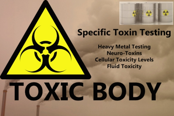 Heavy metal testing? Shouldn't a actual MD be doing that? Also... what the hell is a toxin?