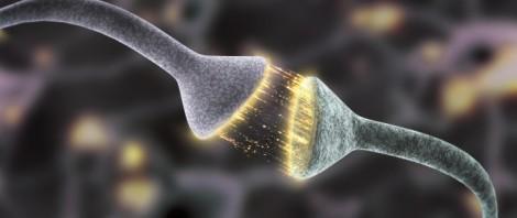 firing_neurons_close2