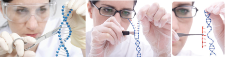gene_editing