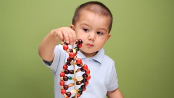 autism genetics