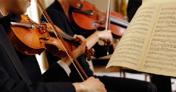 music professional musician