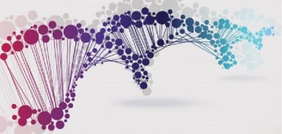 Epigenetics in the brain