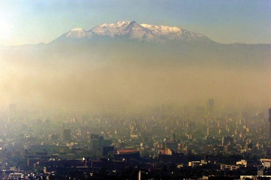 Mexico City's air pollution has detrimental impact on Alzheimer's disease gene