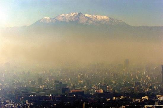 Mexico City's air pollution has detrimental impact on Alzheimer's disease gene