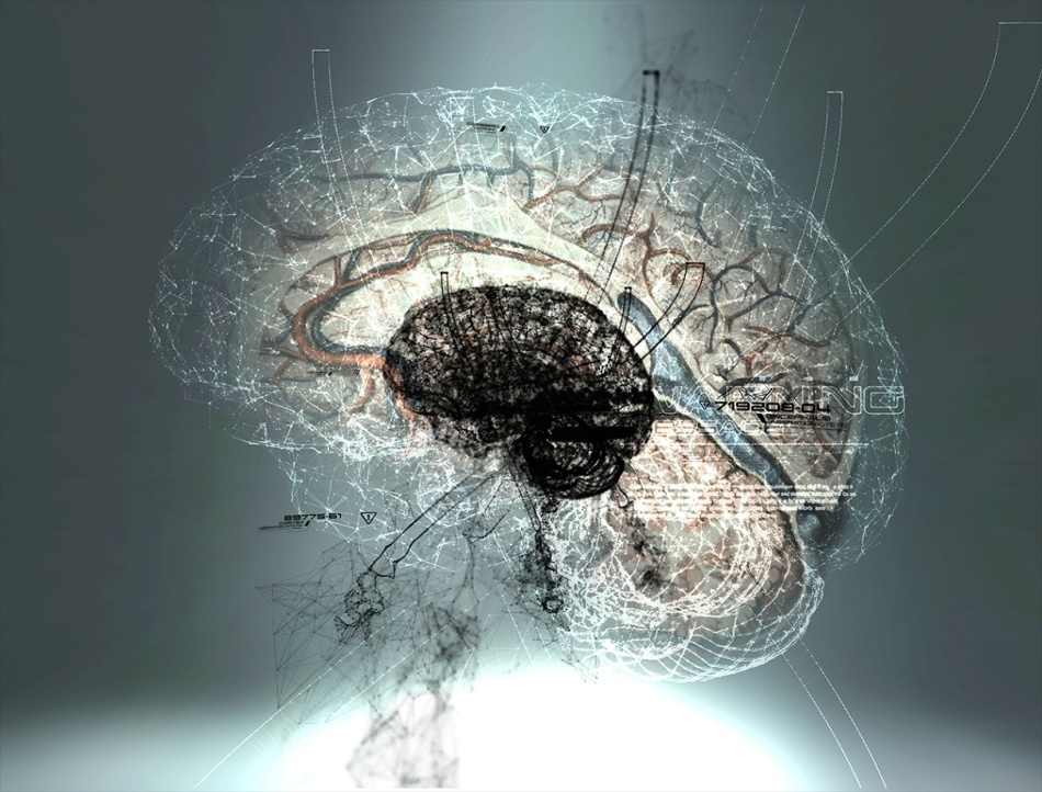 Synapse discovery could lead to new treatments for Alzheimer's disease