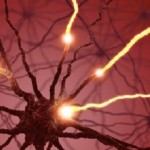 Discovery puts designer dopamine neurons within reach Parkinson's disease researchers discover a way to reprogram the genome