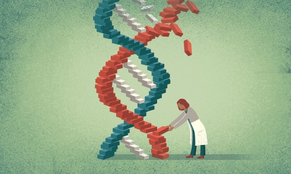 Gene-editing technique successfully stops progression of Duchenne muscular dystrophy