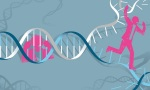 60 genetic disorders affect skin and nervous system