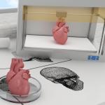 bioengineering with a 3d printer