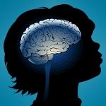 brain development and marijuana