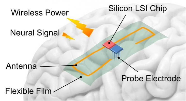 Wirelessly supplying power to brain