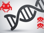 ancient viral DNA