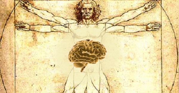 Brain stomach connection