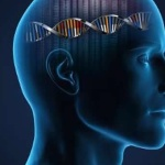 Genetics of alzheimer's