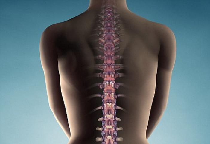nerve regenreation