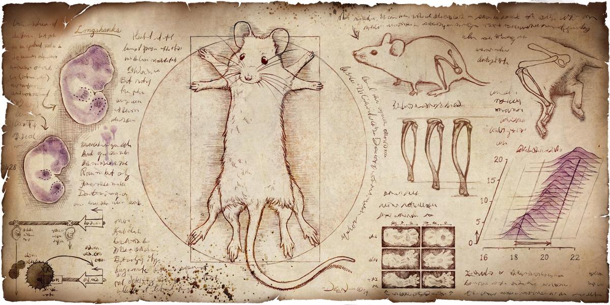 Day 96 - mice