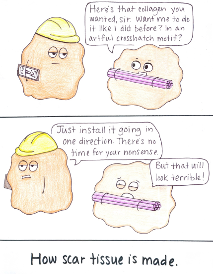 Scar tissue comic